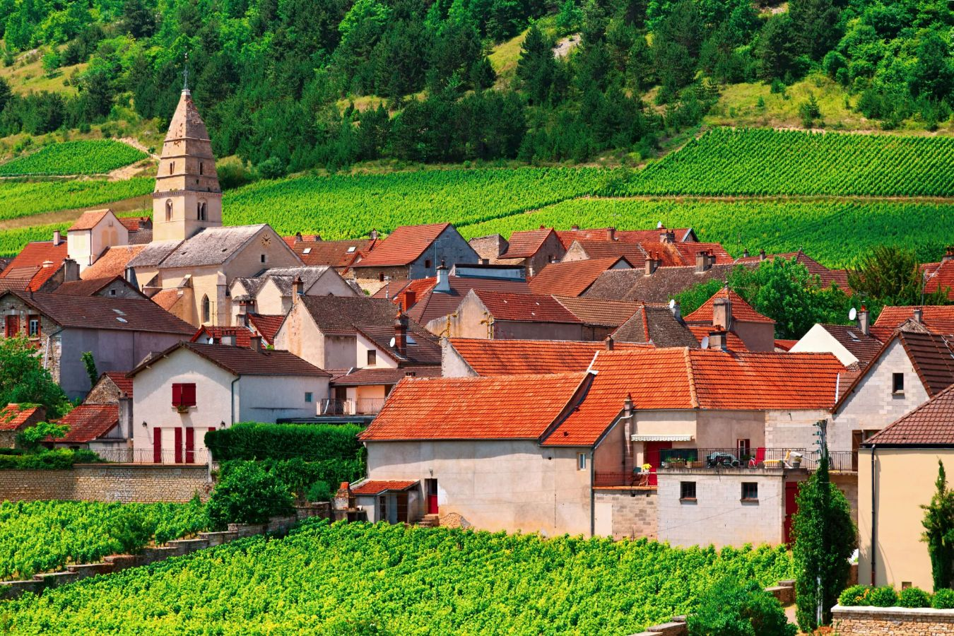 France - Bourgogne - Volnay petit village de Beaune